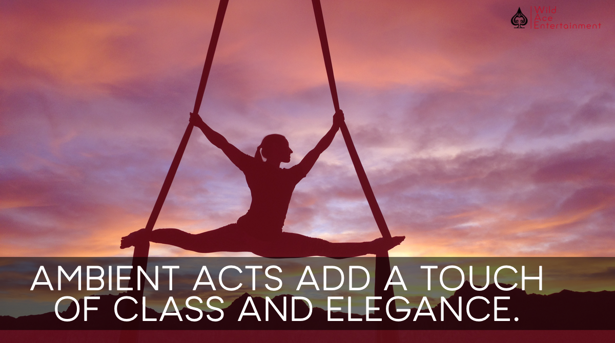 Florida Entertainment Events Agency | Aerial Acts