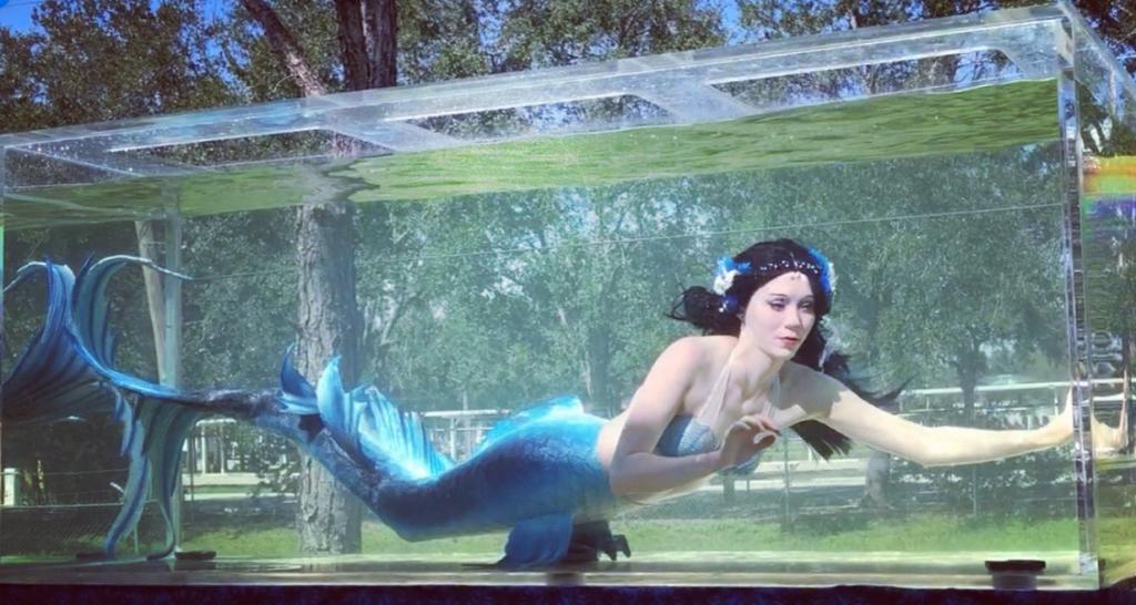 beautiful mermaid FL