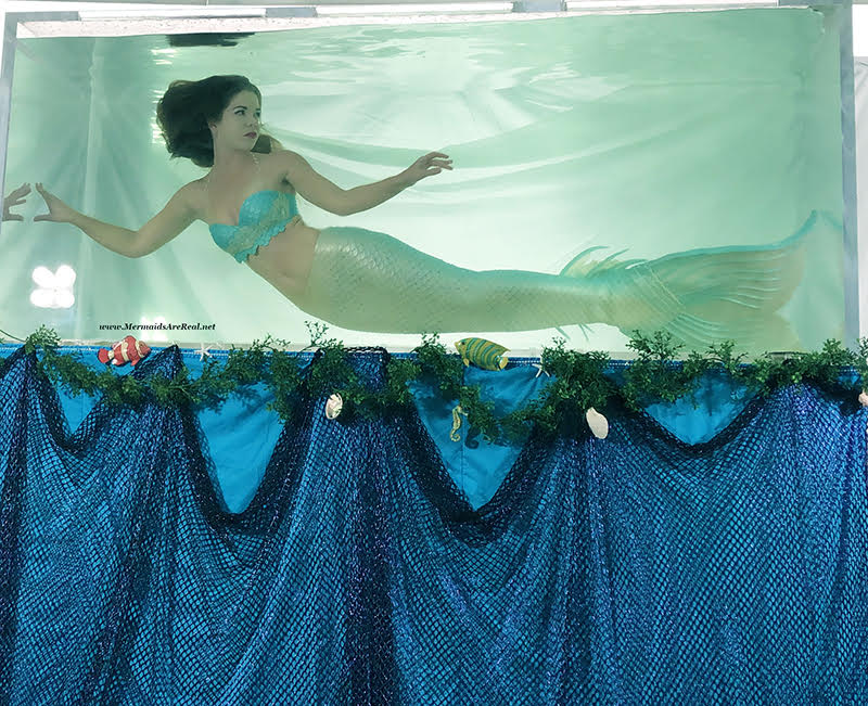 Mermaid Entertainment Southwest Florida