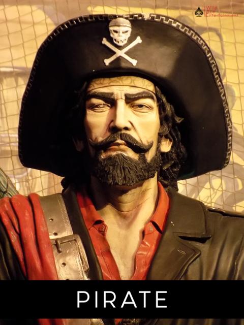 Florida Pirate Themed Entertainment